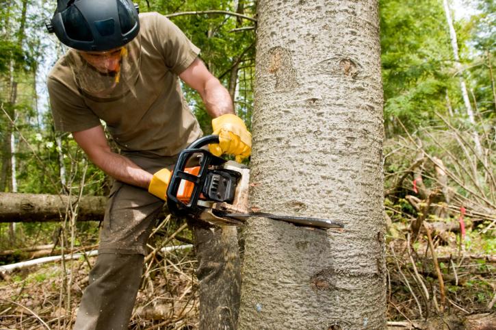 Tuinaanleg & -onderhoud - Groenlant - R Schoutteten - 1