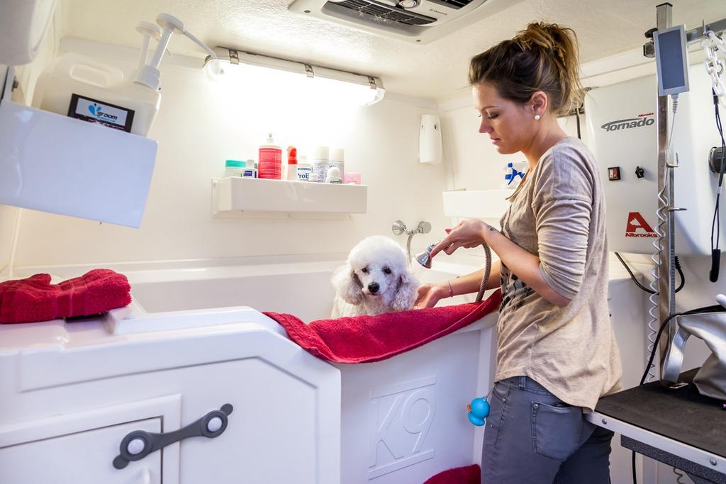 Salon de toilettage mobile ramegnies chin tournai t l - Salon toilettage chien ...