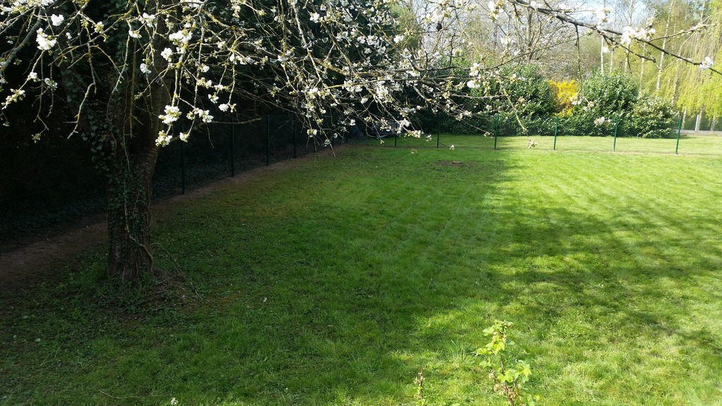 Green clean ben ahin huy t l 085302 jardins for Entretien jardin 53