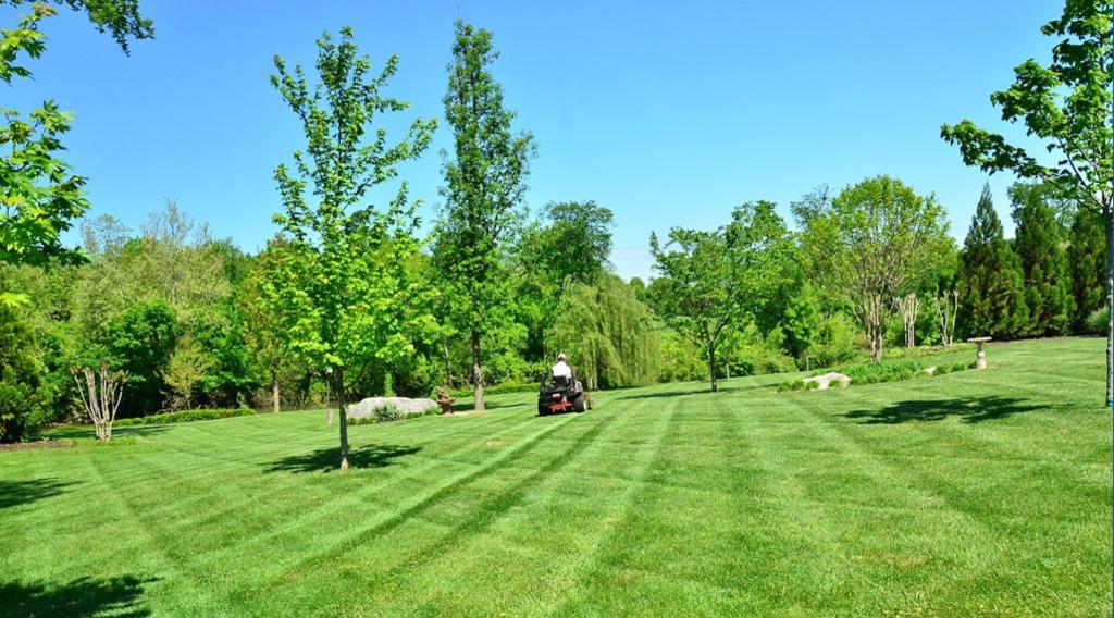 Herstal elagage abattage d 39 arbres for Parc et jardin