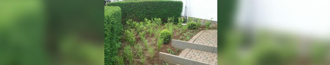 T t t t wemmel t l 0495386 jardins am nagement for Entretien jardin wemmel