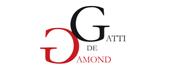 Logo Athénée Royal Gatti de Gamond