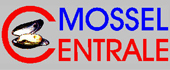 Logo Mosselcentrale nv (Stevelinck)