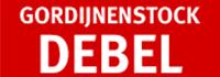 Logo Debel