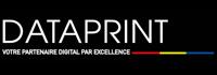 Logo Dataprint