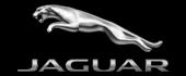 Logo Jaguar Thiry