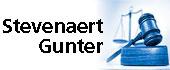 Logo Stevenaert Gunter