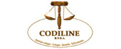Logo Codiline