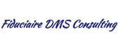 Logo DMS Consulting