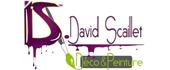 Logo Scaillet David