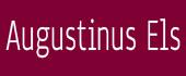 Logo Augustinus Els