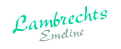 Logo Lambrechts Emeline