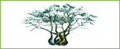 Logo Restaurant - Brasserie D'Achtste Zaligheid