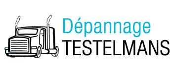 Logo DEPANNAGE TESLEMANS