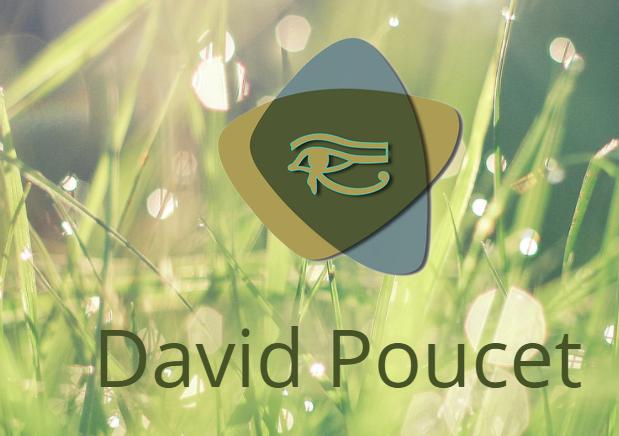 Logo David Poucet
