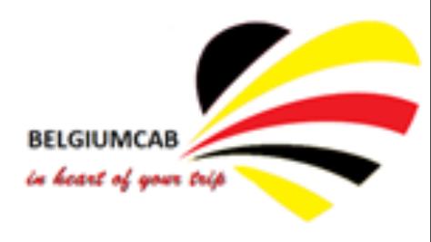 Logo Belgium Cab