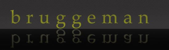 Logo Bruggeman P & F