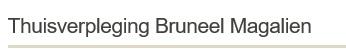 Logo Thuisverpleging Bruneel Magalien
