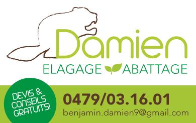 Logo Elagage abattage Damien