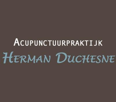 Logo Acupunctuurpraktijk Herman Duchesne