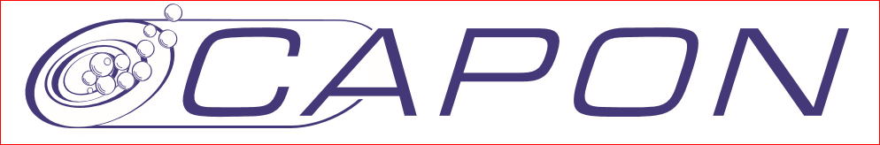 Logo Rodolphe Capon Pneus