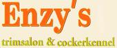 Logo Enzy's