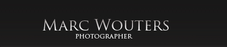 Logo Wouters Marc Fotostudio