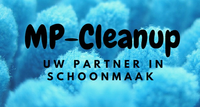 Logo Mp-Cleanup