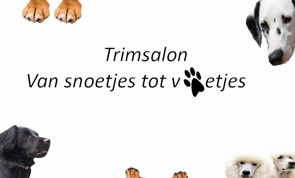 Logo Trimsalon Van snoetjes tot voetjes