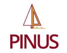 Logo Pinus