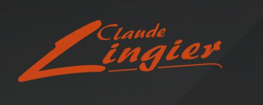 Logo Lingier Vervoerbedrijf