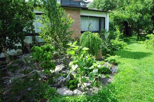 Strešná zeleň prinesie množstvo benefitov každému domu či chatke
